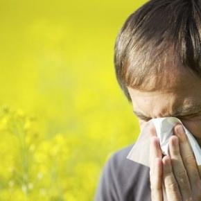 11 consejos de limpieza para aliviar síntomas de la alergia primaveral