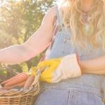 5 Hortalizas fáciles de cultivar para jardineros no experimentados