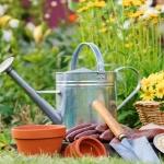 Consejos para el cuidado de su jardín en primavera