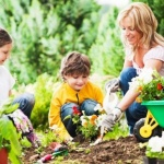 Manchas de jardín ¿cómo eliminarlas de su ropa?